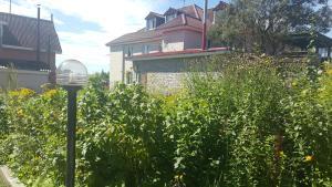 Гостевой дом Ким Хаус - фото 2