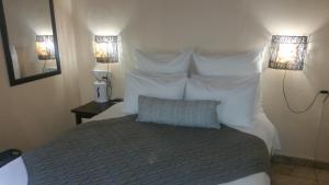 African Phoenix Guest Lodge, Affittacamere  Kempton Park - big - 17