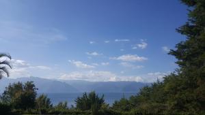 Villas de Atitlan, Villaggi turistici  Cerro de Oro - big - 48