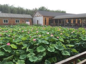 Baiyangding Aiweier Farm-stay