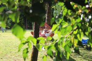 Japodska Treehouse - фото 26