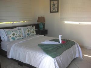 Luxury 6 Bedroom Ocean view with Jacuzzi