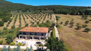 Azienda Agricola Gubbioni
