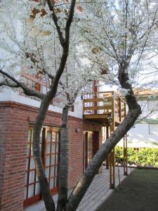 Cabañas Gonzalez, Lodges  Villa Gesell - big - 14