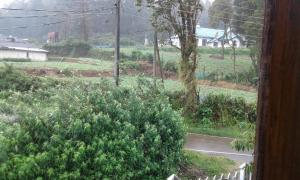 Selis Manor Holiday Home, Alloggi in famiglia  Nuwara Eliya - big - 57