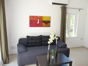 Apartment Villa Ema, Апартаменты  Стариград - big - 17