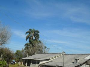 Rancho Assel, Загородные дома  Campina Grande do Sul - big - 26