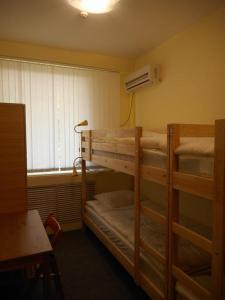 Hostel Tambovsky Volk