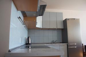 Apartment on Mikhail Dudin 10
