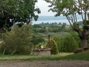 Casa Vacanze Paradiso, Holiday homes  San Lorenzo Nuovo - big - 2