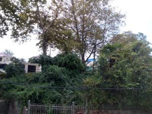 Гостевой дом Pit-Stop - фото 18