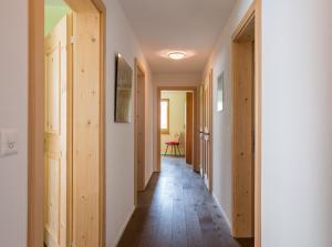 Heidi-Immo Lanezzi, Appartamenti  Flims - big - 5