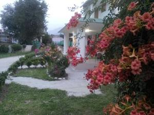 The Tara Villa, Bed & Breakfasts  Shamshi - big - 31