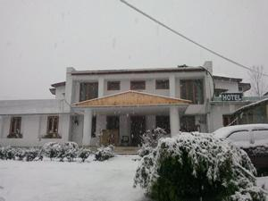 The Tara Villa, Bed & Breakfasts  Shamshi - big - 30