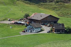 Haflingerhof Frühboden