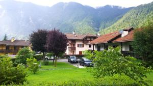 Appartamento Felce, Apartments  Pinzolo - big - 30