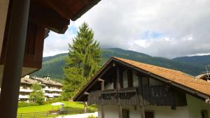 Appartamento Felce, Apartments  Pinzolo - big - 76