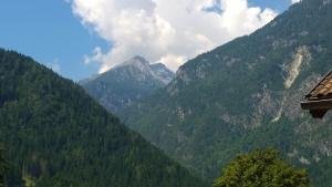 Appartamento Felce, Apartments  Pinzolo - big - 79