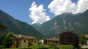Appartamento Felce, Apartments  Pinzolo - big - 82
