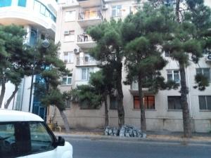 Апартаменты Комфорт на ул.Зарифы Алиевой 59 - фото 3