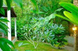 The Nature House Aonang Krabi Thailand, Дома для отпуска  Ао Нанг Бич - big - 71