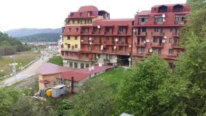 Apartments in Bakuriani on Didveli, Appartamenti  Bakuriani - big - 21
