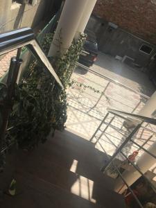 Гостевой дом на Абазгаа 25 - фото 5