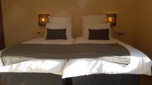 African Phoenix Guest Lodge, Affittacamere  Kempton Park - big - 5