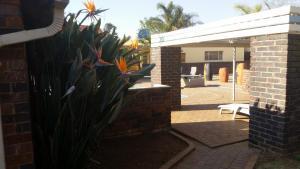African Phoenix Guest Lodge, Affittacamere  Kempton Park - big - 64