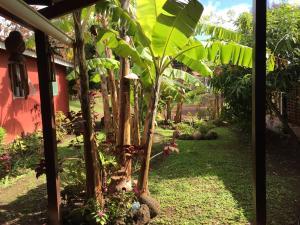 Korina's Guesthouse, Affittacamere  Hanga Roa - big - 40