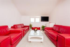 Stiv Apartment