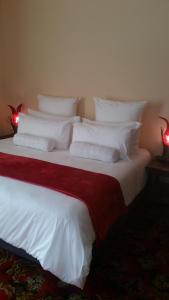 African Phoenix Guest Lodge, Affittacamere  Kempton Park - big - 28
