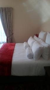African Phoenix Guest Lodge, Affittacamere  Kempton Park - big - 26