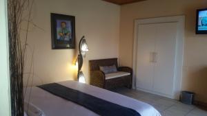 African Phoenix Guest Lodge, Affittacamere  Kempton Park - big - 31