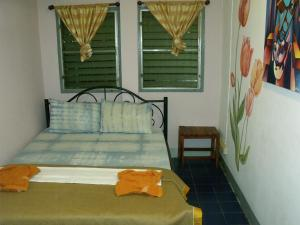 Standard Double Room with Shared Bathroom (Fan)