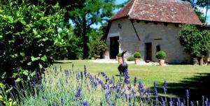 Belveyre Rocamadour, Ferienwohnungen  Rocamadour - big - 7