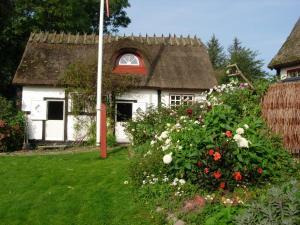 Travel back in time, Загородные дома  Nyord - big - 4