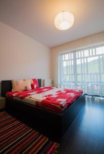 Galaxy Apartment, Ferienwohnungen  Braşov - big - 5