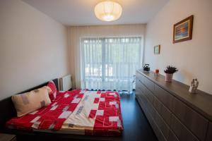 Galaxy Apartment, Апартаменты  Брашов - big - 3