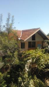 obrázek - House Villa Tina