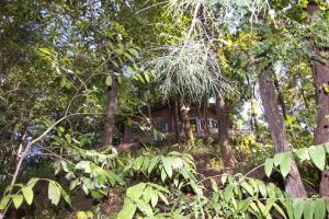 Dabhosa Waterfall Resort, a Nature Trails Resort