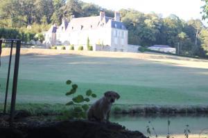 Château d'Hodebert