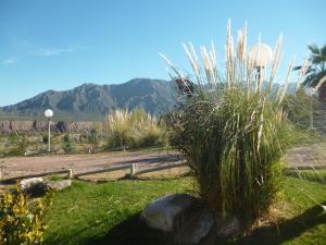 Terrazas de Encalada, Chalet  Cacheuta - big - 74