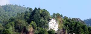Whistling Pines Home Stay