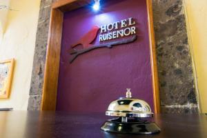 Сан-Мигель-де-Альенде - Hotel Ruiseor