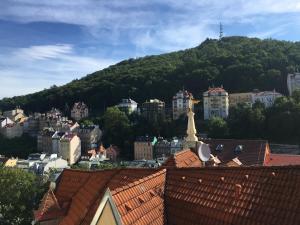 Apartment Veronika 2, Appartamenti  Karlovy Vary - big - 22