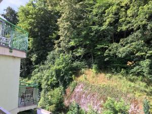Apartment Veronika 2, Appartamenti  Karlovy Vary - big - 16