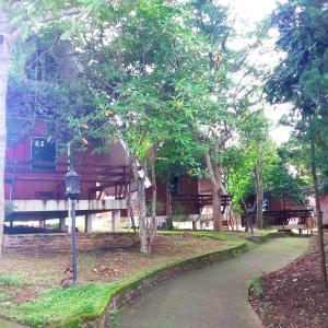 Aomdoi Resort