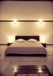 Hotel Ciobanasu