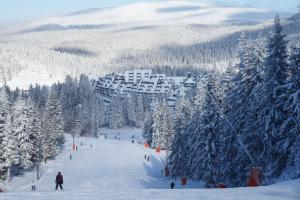 Apartments Suncani Vrhovi Kopaonik, Apartments  Kopaonik - big - 32
